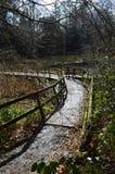 Promenade en bois. Images libres de droits