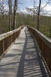 Promenade en bois augmentée Image libre de droits