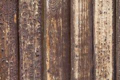 Promenade en bois minable tuiles en bois, peinture minable brune Photos stock