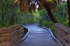 Promenade en bois par le stationnement Photo libre de droits