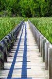 Promenade en bois par les marais images stock