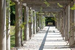 'promenade' en el parque Imágenes de archivo libres de regalías