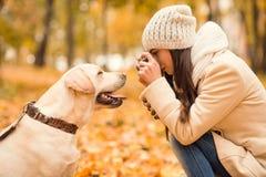 Promenade en parc d'automne Photos stock