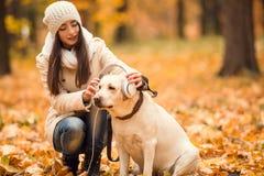 Promenade en parc d'automne Photo stock