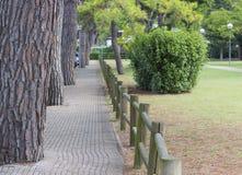 Promenade en stationnement Photographie stock libre de droits