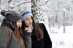 Promenade en stationnement de l'hiver Image stock