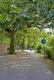 Promenade en stationnement en automne Image stock