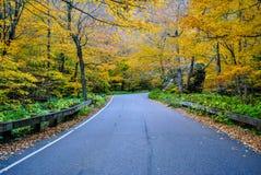 Promenade en voiture de chute Photo stock