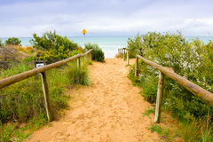 Promenade grande d'océan Photographie stock
