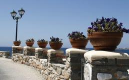 'promenade' hermosa adornada con las flores en Foto de archivo