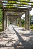 Promenade in het park Stock Afbeeldingen