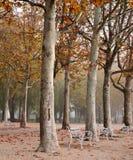 Promenade at Lake Balaton in autumn Stock Images
