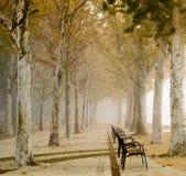 Promenade at Lake Balaton in autumn Stock Photo