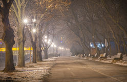 Promenade langs de rivier Sava Royalty-vrije Stock Foto's
