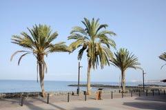 Promenade in Las Americas, Tenerife Stock Photos