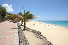 Promenade at Morro Jable, Fuerteventura, Spain royalty free stock image