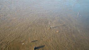 Promenade Muehlenweide en straat worden die die door de rivier Rijn wordt overstroomd stock videobeelden
