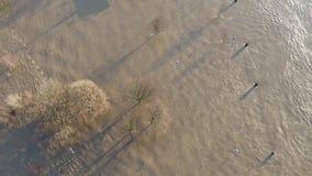 Promenade Muehlenweide en straat worden die die door de rivier Rijn wordt overstroomd stock video