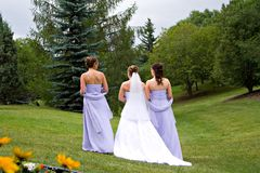Promenade nuptiale Photos stock