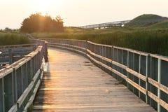 Promenade op zandduinen Stock Fotografie