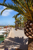 Promenade with palm trees and boats in Alcudia, Mallorca Stock Photography