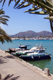 Promenade with palm trees and boats Stock Image