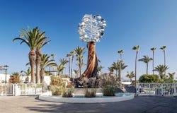 'promenade' Palma-alineada Imagen de archivo libre de regalías