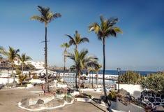 'promenade' Palma-alineada Fotos de archivo