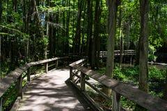 Promenade par le paradis Photo stock