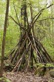 Promenade par les bois images libres de droits