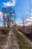 Promenade par les gisements de ressort La nature pittoresque de l'Angleterre pendant le premier ressort images stock