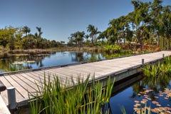 Promenade par un étang réfléchi avec des nénuphars et des usines Photos libres de droits