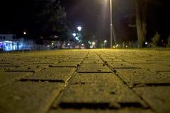 Promenade in Park Royalty-vrije Stock Afbeeldingen