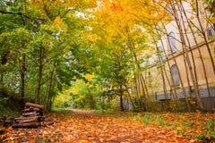 Promenade of the Petite Ceinture in autumn, Paris Stock Photo