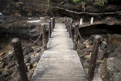 Promenade, plankbrug Royalty-vrije Stock Foto's