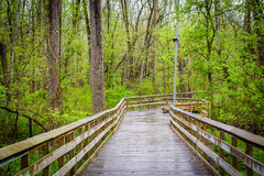 Promenade am See Roland Park, in Baltimore, Maryland stockfoto