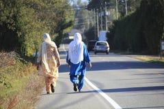 Promenade sikhe de deux amis sur la route rurale Images libres de droits