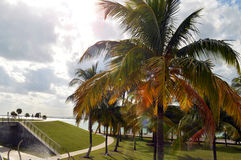 Promenade on South Pointe Park, South Beach, Florida Royalty Free Stock Photos