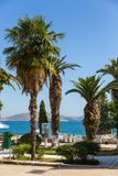 Promenade street with palms in Saranda town, Albania stock photo