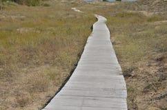 Promenade sur la terre arénacée photo stock