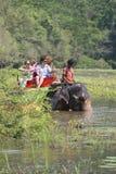 Promenade sur un éléphant sur le lac tropical Le Sri Lanka Photo libre de droits
