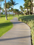 Promenade in tropical setting. Wonderful grass lawn in a tropical setting with the ocean in the background and palm trees Royalty Free Stock Photos