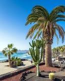 Promenade und Küstenlinie in Puerto Del Carmen, Lanzarote, Spanien Stockfotografie