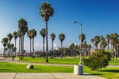 Promenade von Venince-Strand mit Palmen, Los Angeles, USA lizenzfreies stockfoto