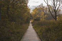 Promenade in Wtland Stock Fotografie
