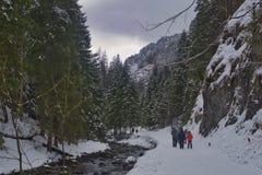 Promenades dans les montagnes dans le paysage neigeux photos libres de droits