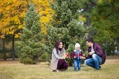 Promenades de famille, l'automne Photographie stock libre de droits