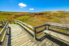 Promenades Phillip Island Melbourne royalty-vrije stock foto's