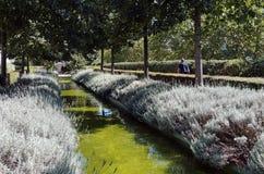 Promenadplantéebana i den Paris mitten Arkivbilder