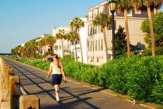 Promenera Charleston Waterfront arkivfoton